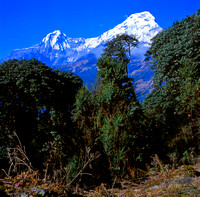 North and South Peaks of Annapurna