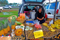 KAUAI FARMERS' MARKETS-12/2010