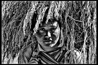 Bhutanese Girl Carrying Sheaths of Rice